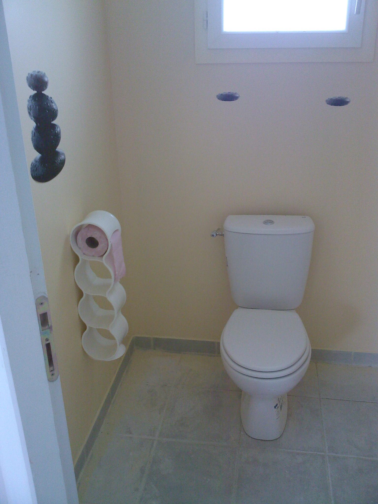 Awesome Quelle Couleur Peindre Toilettes Ideas - Transformatorio ...